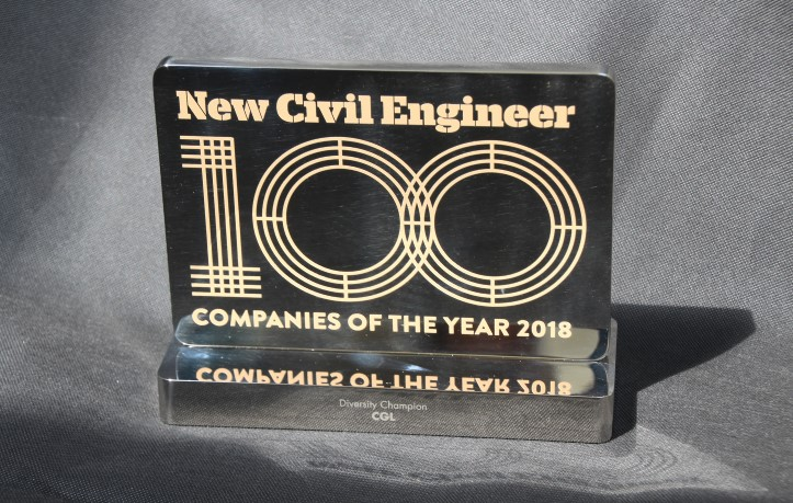 NCE100 Award for Diversity 2018 trophy
